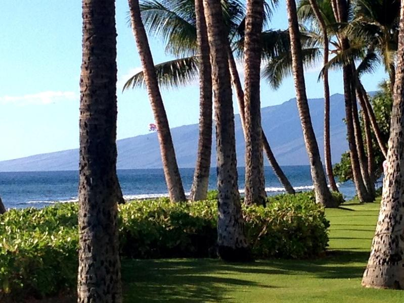 Beach walk view from Whalers Village - 2 bedroom 2 bath spacious condo in Kaanapali Maui - Lahaina - rentals