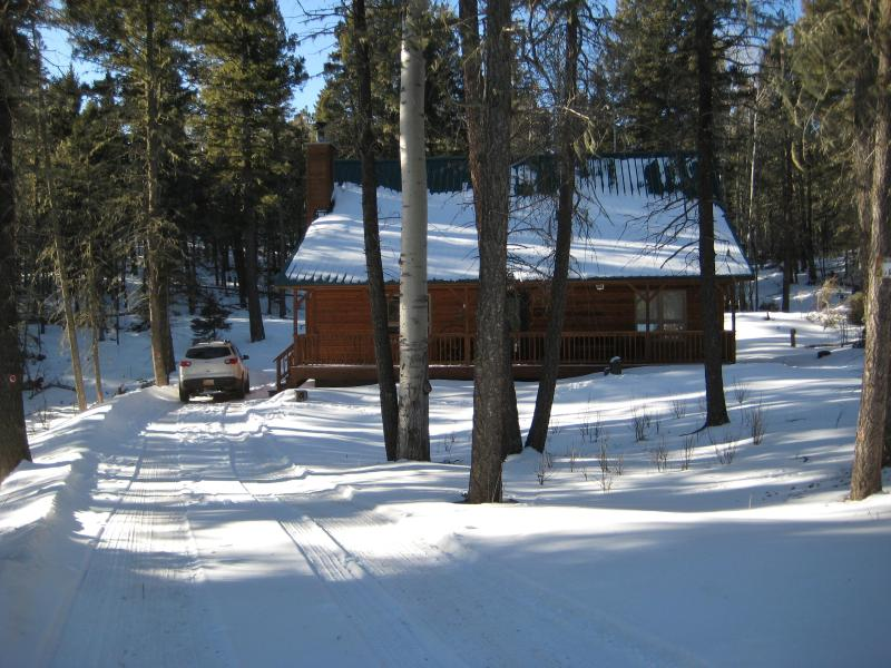 The cabin is nestled in the woods - Cabin in the Woods-Only $350 starting on March 14 - Angel Fire - rentals