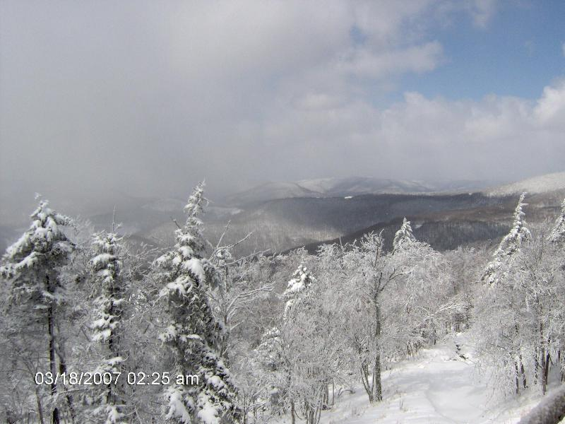 View off Back Deck - Snowshoe Resort Condo: Summit 207-A - Snowshoe - rentals