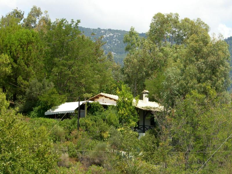 View of the house - Beautiful Holiday Villa in Evia island, Greece - Politika - rentals