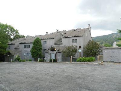 Two bed, two bath condo at base of Mt Snow - Image 1 - West Dover - rentals