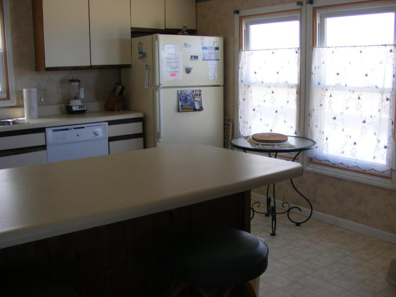 OceanFront in Nags Head - Image 1 - Nags Head - rentals