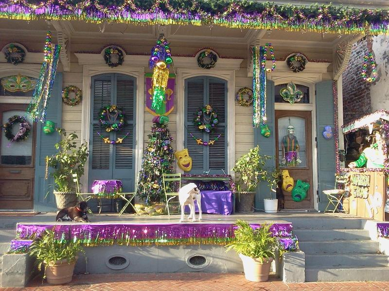 Our stoop decoarations for Mardi Gras/Superbowl - Heart of the French Quarter with a Stoop - New Orleans - rentals