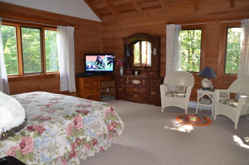 Master Bedroom/HDTV - Lovely Vacation House, Low Prices, WIFI/HDTVs - Wintergreen - rentals