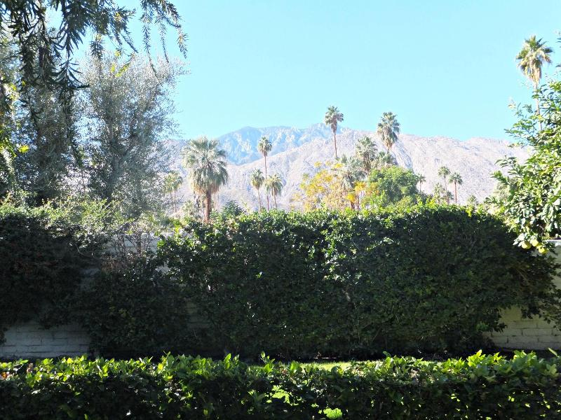 Mountain View from back patio. - Mountain View. - Palm Springs - rentals