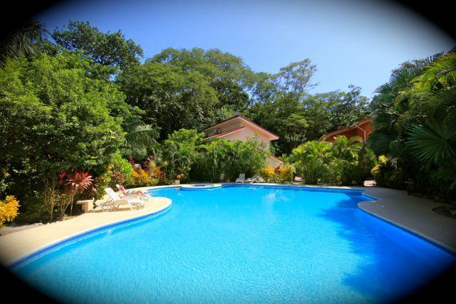 Biggest pool in the area! - Casa Zona Azul - 10 minute walk to the beach! - Nosara - rentals