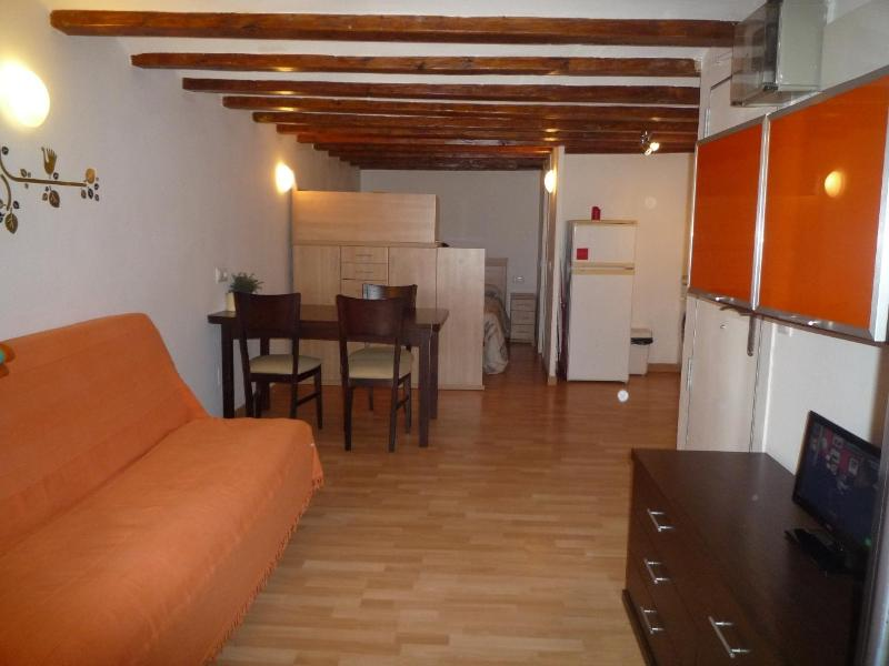 Self-contained studio apartment - San Pere Placa Studio - Barcelona - rentals