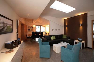 living alm 1 - Alm-Apartments Zell am See - Zell am See - rentals