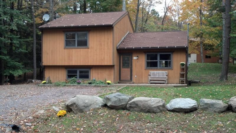 Newer Lake House in the Woods - Image 1 - Lake Ariel - rentals
