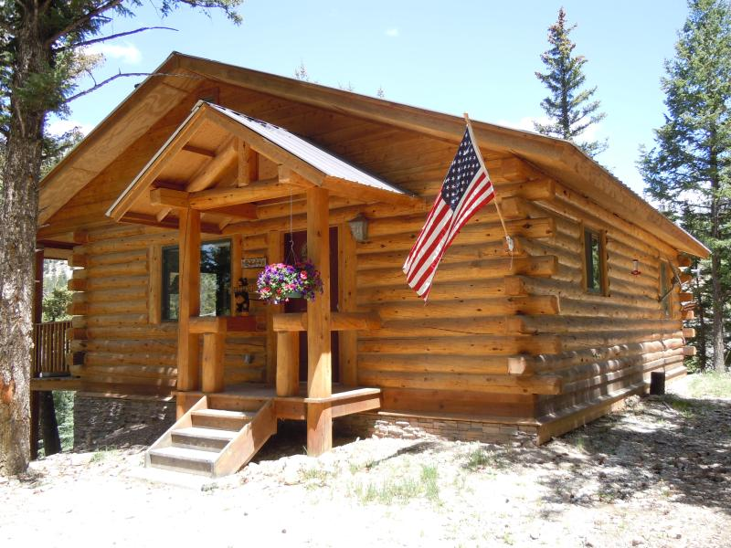 Welcome to Argenta Falls Cabin! - Cozy Cabin in Woods With Alpine Loop Access - Lake City - rentals