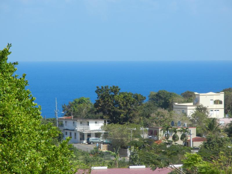 Views from the terrace - Isabela-Relaxing Beach House for Family & Friends - Isabela - rentals