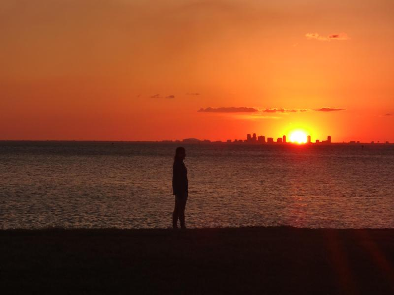 Enjoy amazing sunsets over Tampa Bay - New Luxury Townhome on the Beach, Nice View, Pools - Tampa - rentals