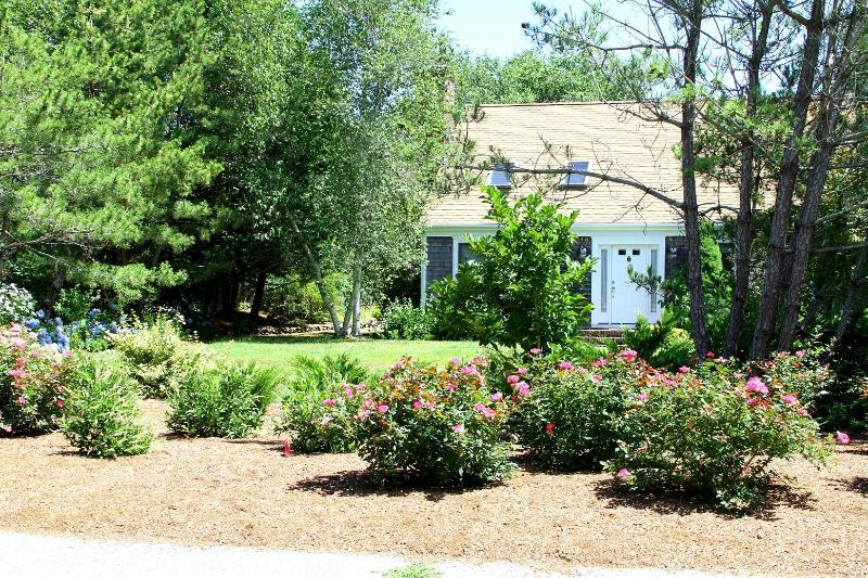 A quiet street and beautiful landscaping - The Dancing Dolphin - near Coast Guard Beach - Truro - rentals
