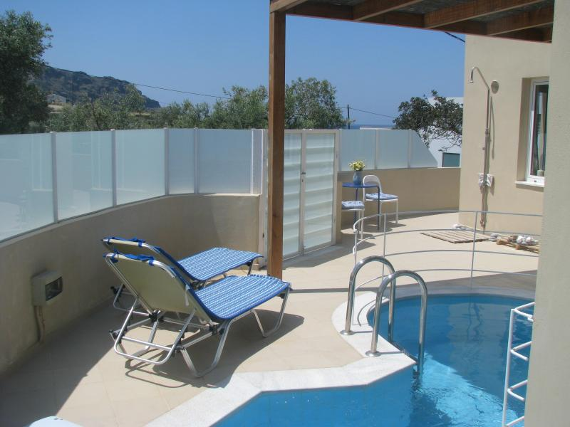by private pool - Holidayhouse with private pool close to the beach - Plakias - rentals