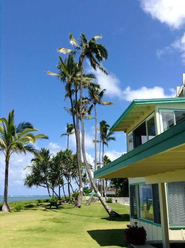 Beachfront Cottage Building  - Beautiful Beachfront Cottage in Tropical Paradise - Hauula - rentals