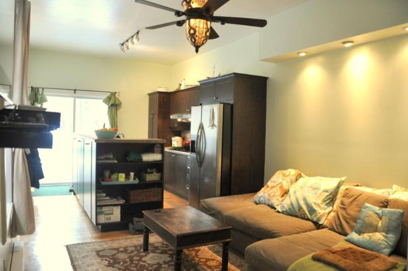 Gorgeous Furnished Condo Near Downtown Montreal - Image 1 - Montreal - rentals