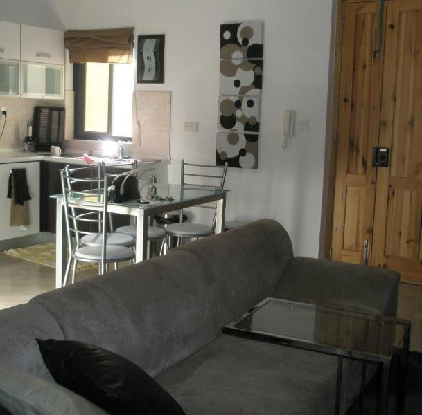 Large kitchen room and living area enjoying natural light - Luxury apartment with WIFI close to Valletta - Msida - rentals