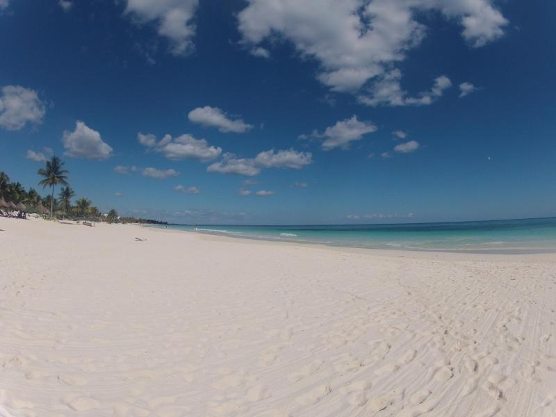 Tulum Beach * AWESOME * - New Condo In Tulum *SALE* $109 - Tulum - rentals
