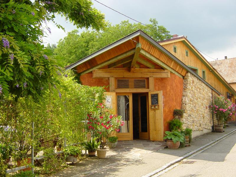 Reception of Vignoble KLur  - Romantic and organic place at wine estate Klur - Katzenthal - rentals