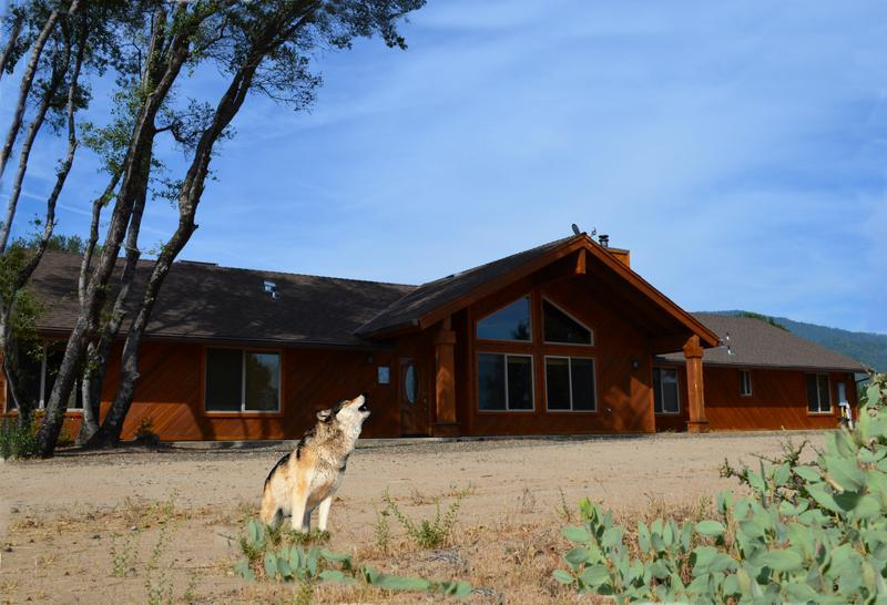 Front yard exterior - Escape to Howling Wolf Lodge on 25 secluded acres - Mariposa - rentals