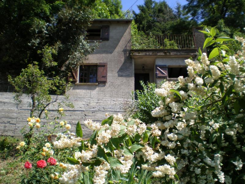 A view of Le Mazet from the garden - Le Mazet - Tarn - rentals