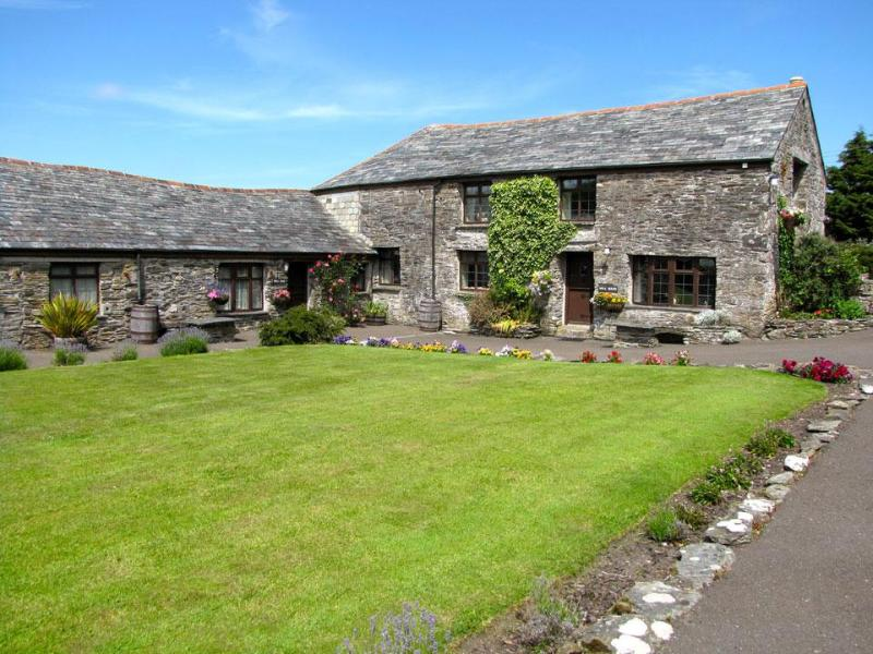 Mill House - Mill House - Boscastle - rentals