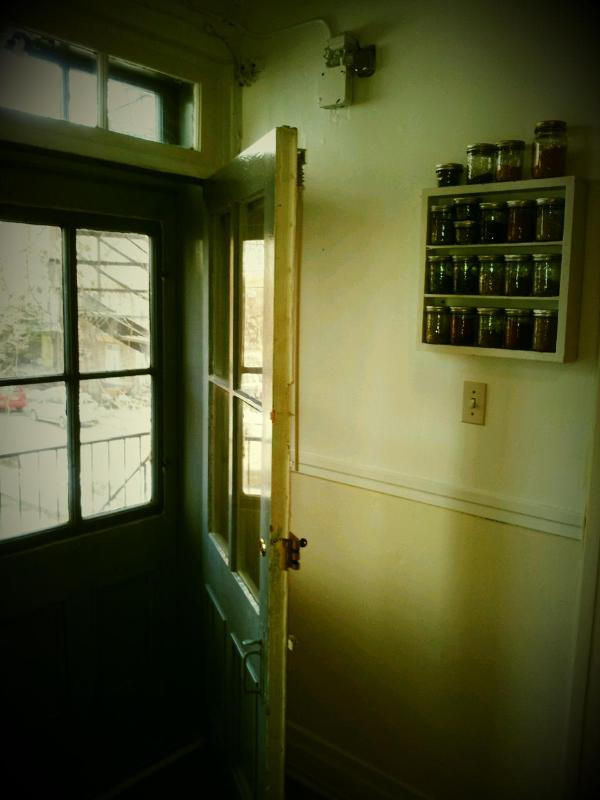 Backdoor to the Terrace  - Charming Victorian Apartment (Plateau) - Montreal - rentals