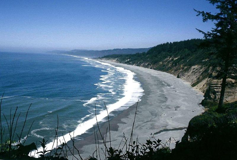 View of Agate Beach from Patrick's Point...Can you see the guest house? - Agate Beach Guest House - Trinidad - rentals
