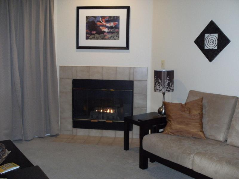 Enjoy the gas fire on cold evenings! - Affordable w/ Pool and Open Space overlooking lake - Boulder - rentals