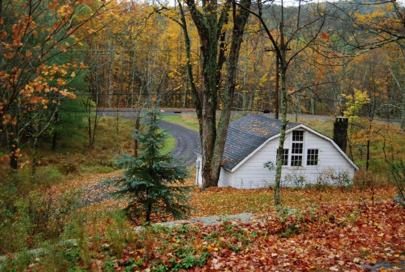 Out Building in the Fall - Perfect Country Getaway (Woodstock) - Woodstock - rentals