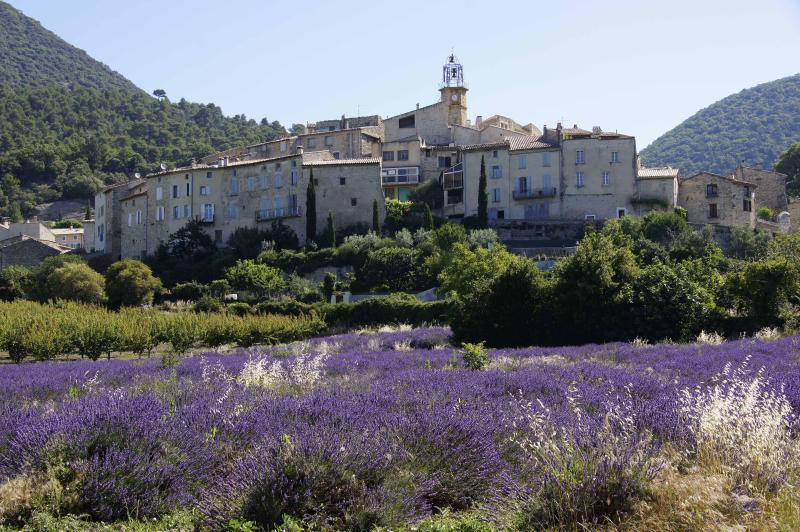 Venterol with Lavender Fields - Summer House in Sunny Semi-Perched Wine Village - Drome - rentals
