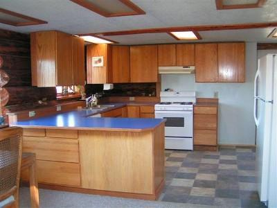 Kitchen with Gas Range, Fridge Freezer and Dishwasher - Private and Cozy Log Home by Anchor River - Anchor Point - rentals