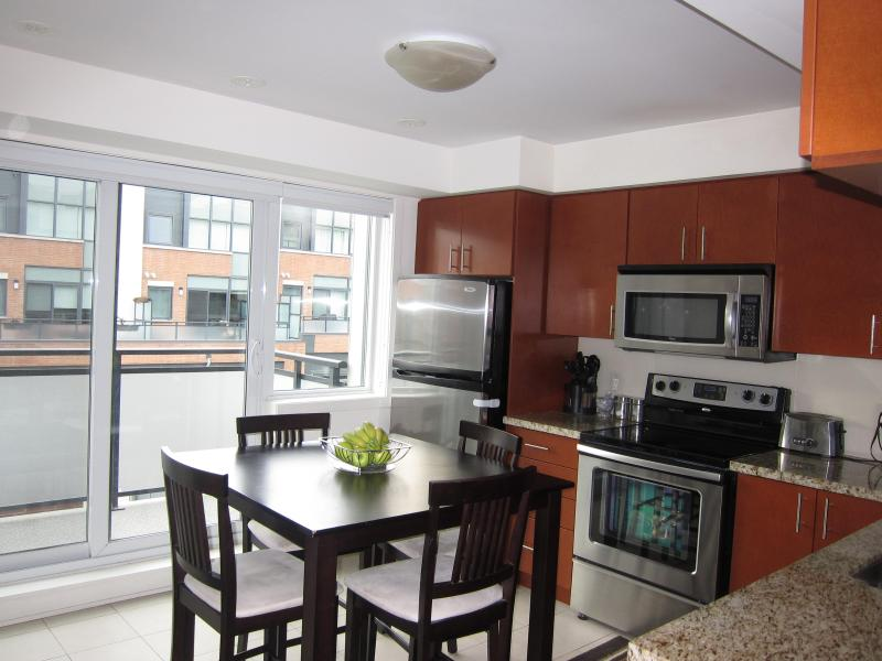 New 4 Bedroom Townhouse in Downtown Toronto - Image 1 - Toronto - rentals