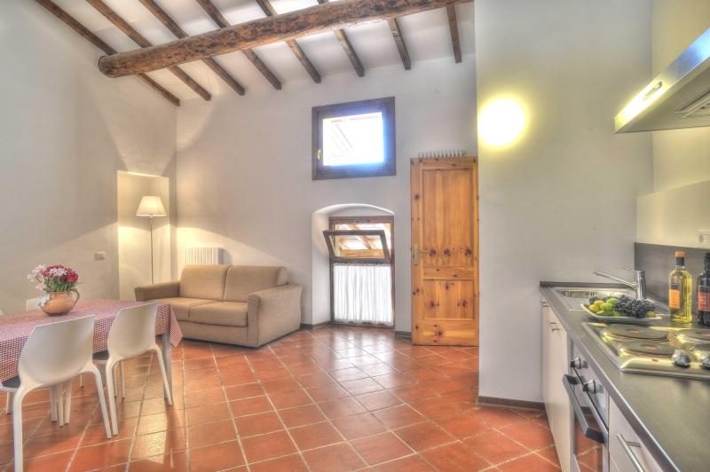 Farmhouse surrounded from wineyards / CORVINA - Image 1 - Cavaion Veronese - rentals