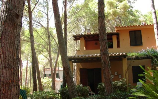Front  - Villa La Felce, lovely villa at 200m from the sea - Pula - rentals