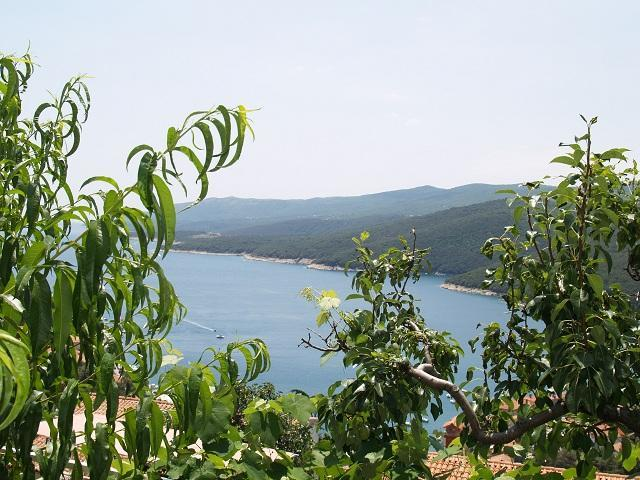 Apartment Rabac (3-4 people) 05 - Image 1 - Rabac - rentals