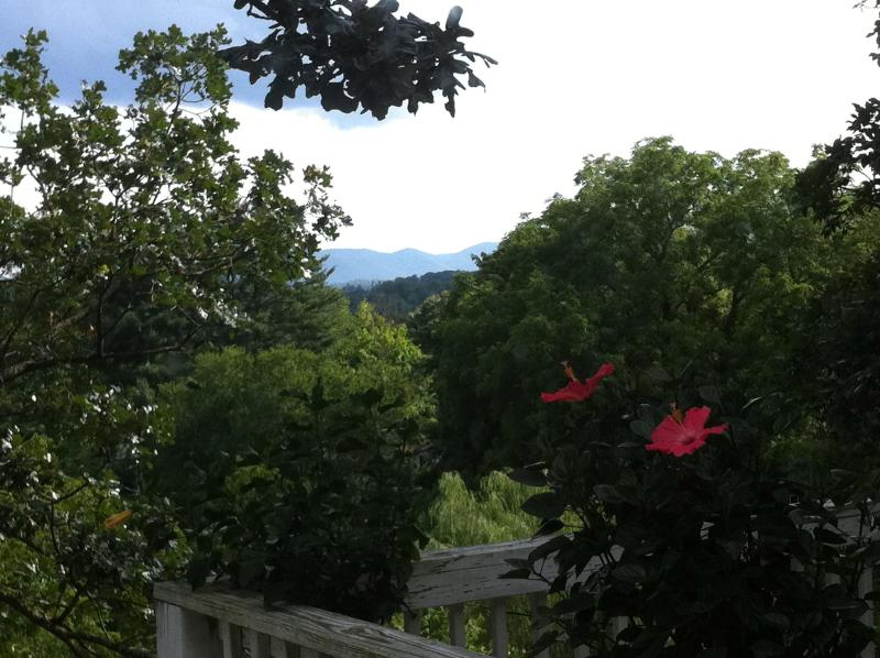 Historic home near downtown with mountain views - Image 1 - Asheville - rentals