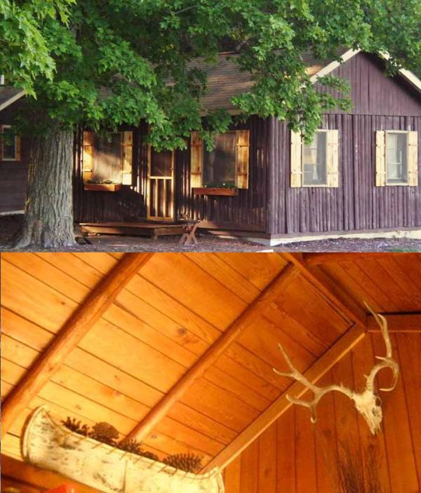 1937 Log Cabin with vaulted ceiling - Sleeping Bear Dunes Michigan Bass Lake Cottages - Maple City - rentals