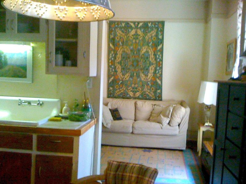 the  living  room     - A  Perfect  X'mas  in  a Charming  Apartment - Montreal - rentals