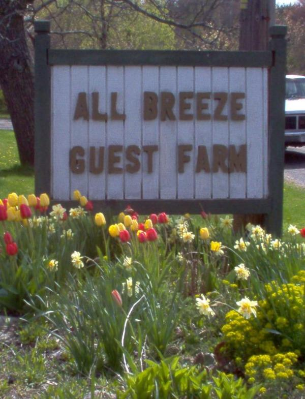 Look for our sign - All Breeze Guest House - Barryville - rentals