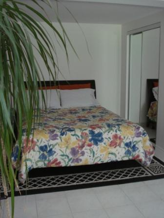 Large mirrored closet in bedroom - Beautiful Studio apartment 20 min from downtown! - Montreal - rentals