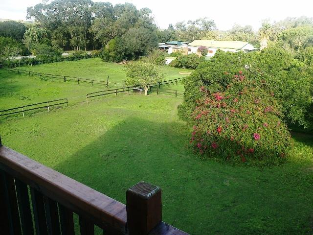 property over view - Self Catering Small Cottage - Port Elizabeth - rentals
