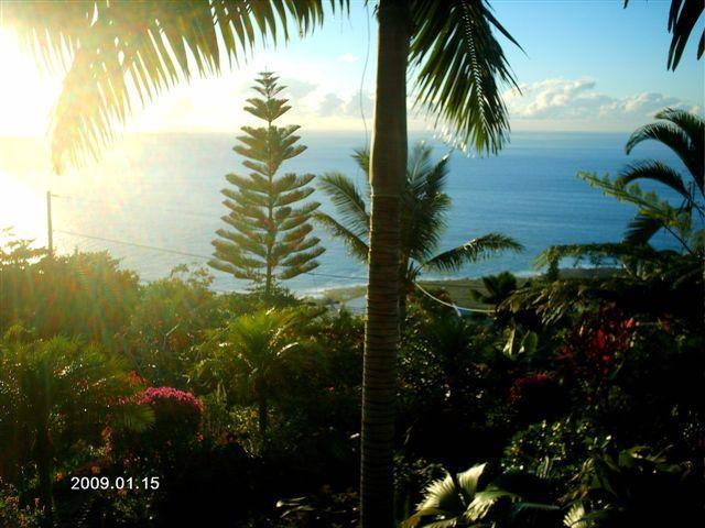 View of the Pacific coast from the lanai - Hale Gediminas - Captain Cook - rentals