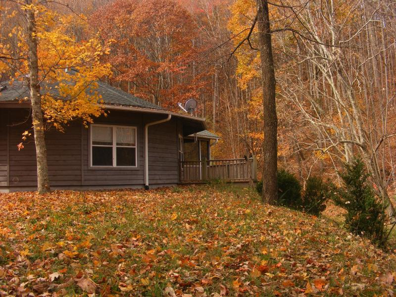 Private Pristine Mountain Retreat * Luck NC - Image 1 - Hot Springs - rentals