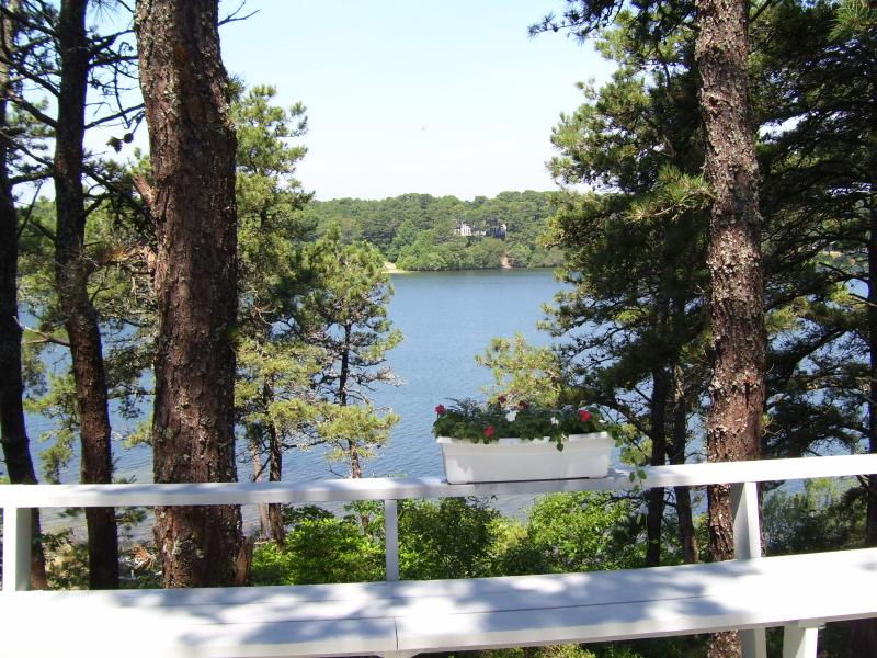 view from deck - Chatham, White Pond, Nice Cottage with Great Deck! - Chatham - rentals