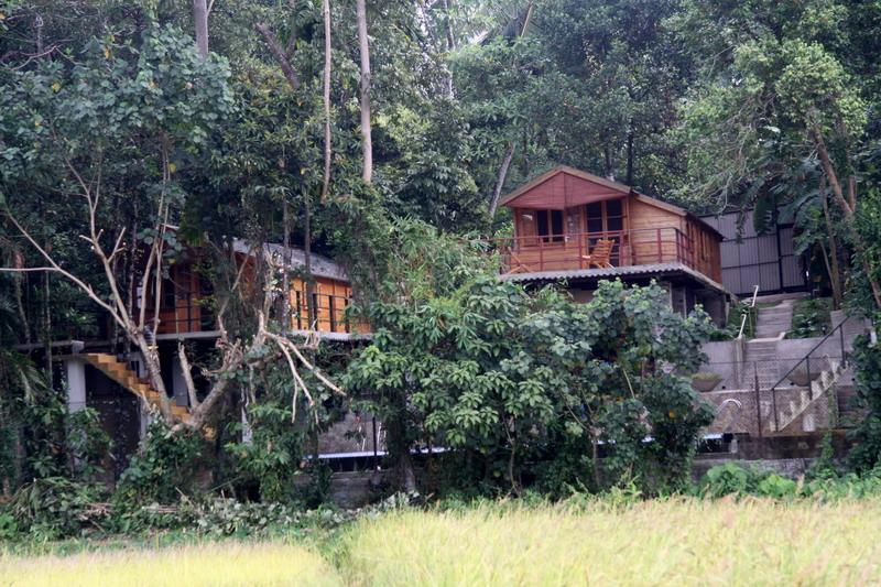 View from the Paddy Fields - Zeppelin Eco Cabins - Wilpattu National Park - rentals