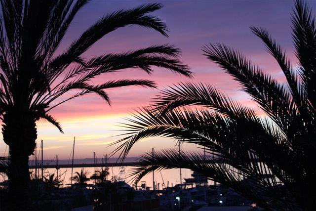 A beautiful sunset overlooking the Marina - Great  Location, Great Price,  La Paz Mexico! - La Paz - rentals