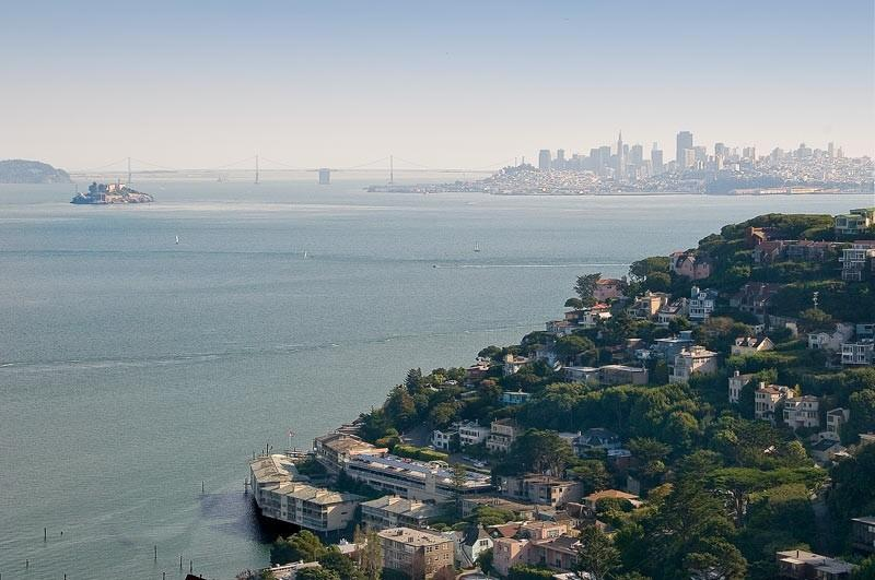 Close Up View from the House - Spectacular, Panoramic Views in Sausalito! - Sausalito - rentals