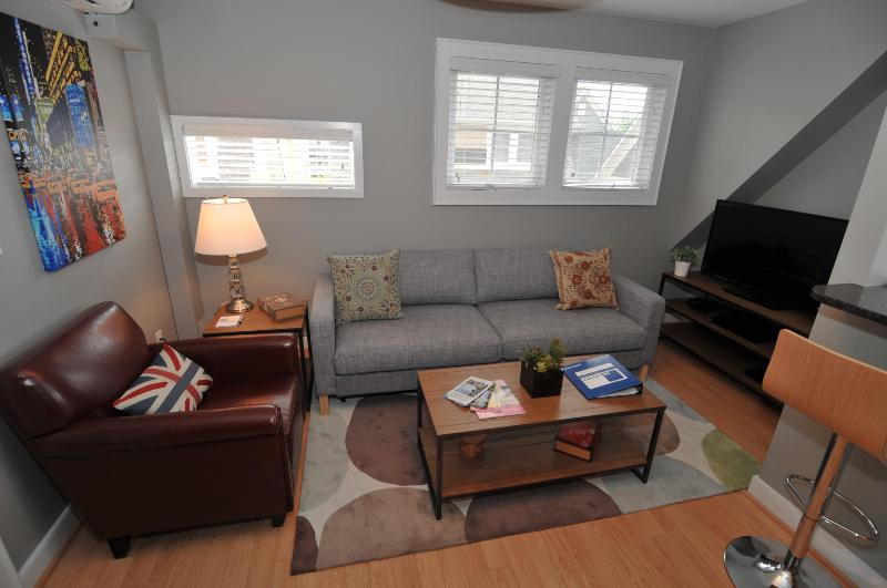 Welcome to your living room. - Luxury One-Bedroom Executive Suite 10Min from UVA. - Charlottesville - rentals