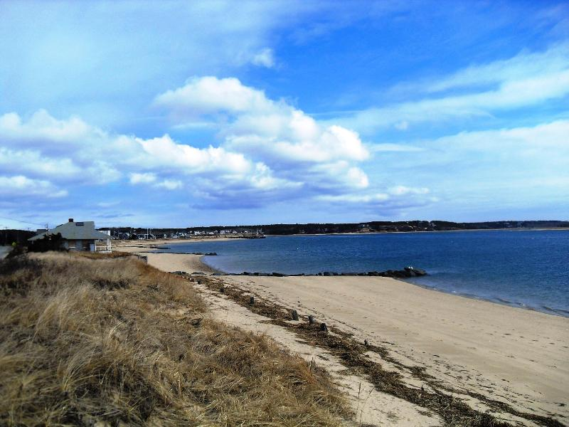 Water Front View - Waterfront View, Two minute walk to Mayo Beach - Wellfleet - rentals